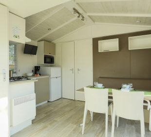 location mobil home en vendée