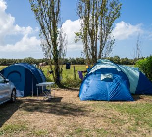 camping vendée la tranche sur mer camping du jard