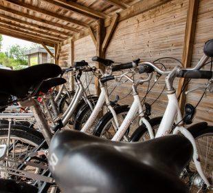 camping vendée la tranche sur mer location vélo